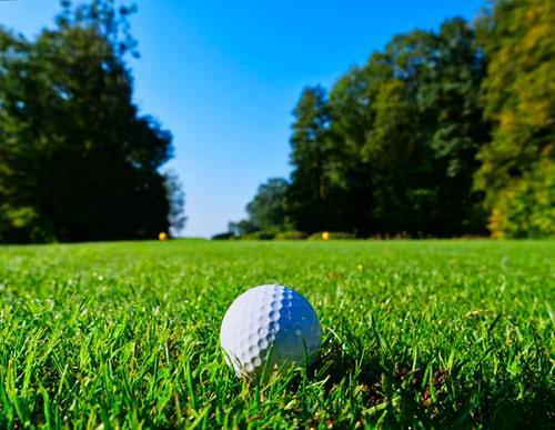 Mirror Lake Golf Course